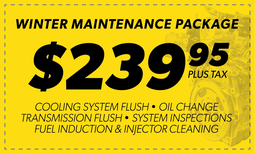 $239.95 Winter Maintenance Package Coupon