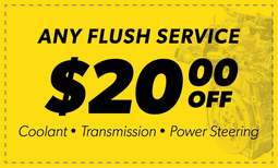 $20 Off Any Flush Service Coupon