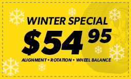 $54.95 Winter Special Coupon