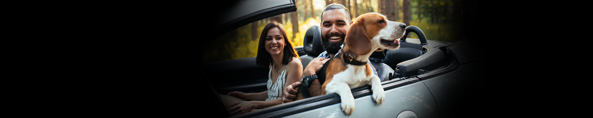 Couple and dog in a car
