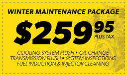 $259.95 Winter Maintenance Package Coupon