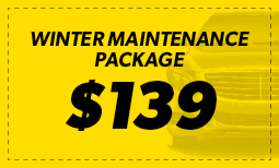 $139 Winter Maintenance Package Coupon